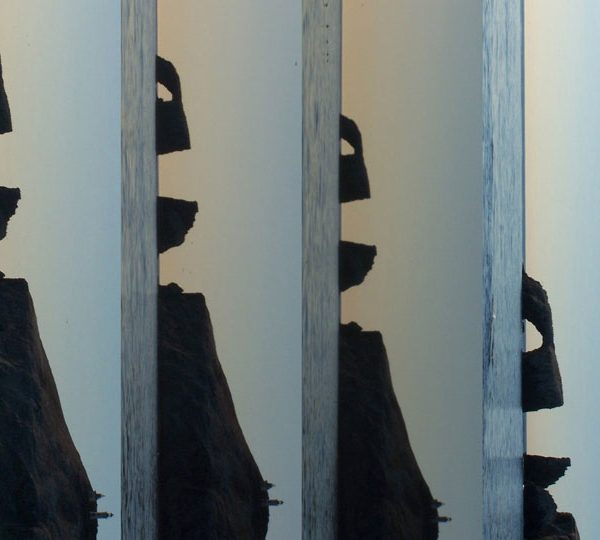 Galerie À l'Endroit à l'Envers, collection Séries, Anacapa
