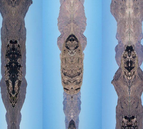 Galerie À l'Endroit à l'Envers, collection Séries, Les Coyotes