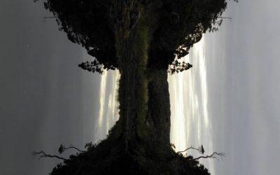 Galerie Lumières - De Caleta Jaime à Caleta Moonlight Shadow