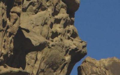 Galerie Sculptures - L'Ambitieuse Parc Ischigualasto